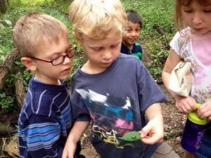 1st grade nature walk.